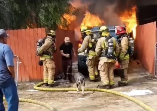 Dog rescue burning home
