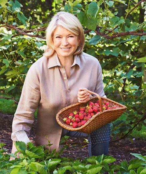 Martha Stewart garden