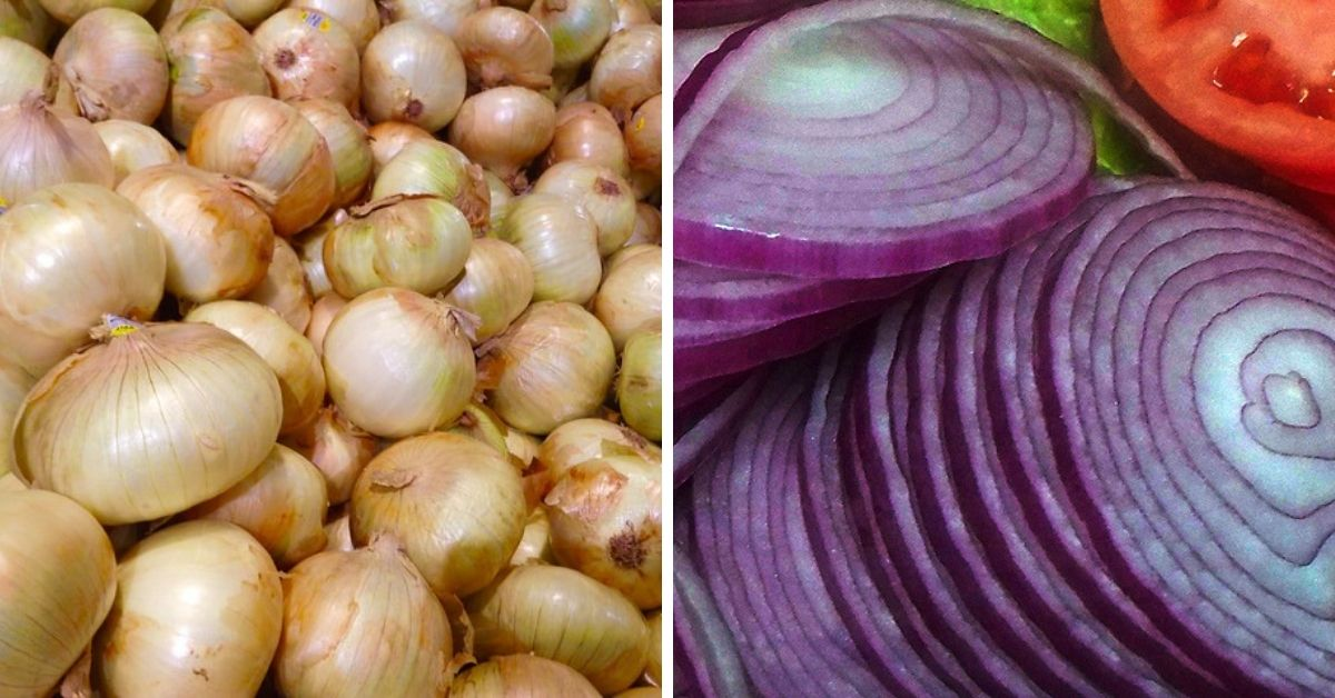 8 Reasons You Should Be Eating More Onions